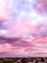 pinkskies_australiaday-6
