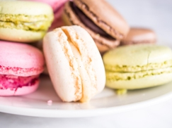 French Macarons-9