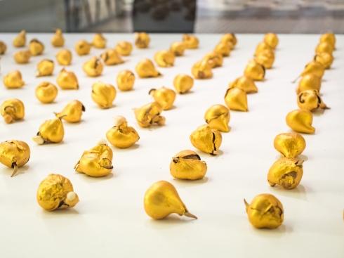 gold plated tulip bulbs