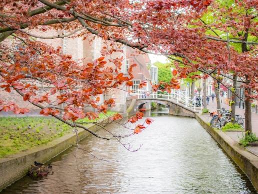 TheHague_Rotterdam_Delft+-61