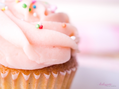 Planners&Cupcakes-23